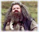 Hagrid1.jpg