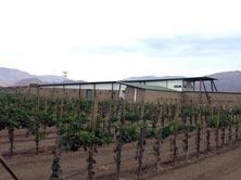 paralelo winery.jpg